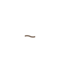 Majestic Bay